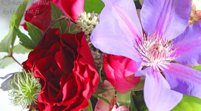 Ruusu, clematis ja hortensia