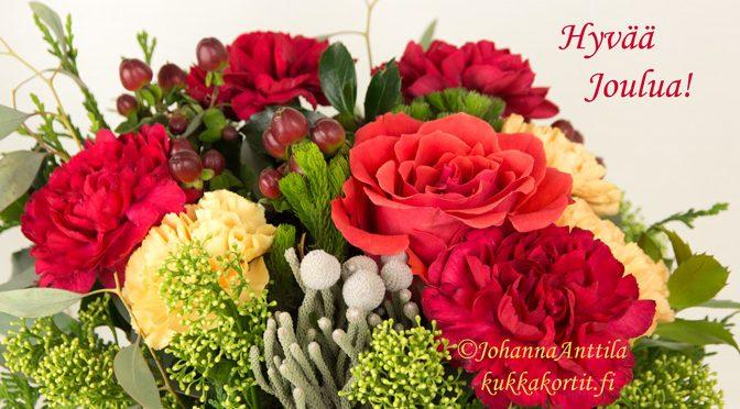 Neilikat ja ruusu